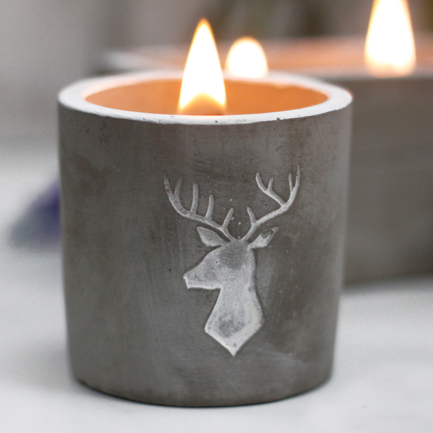 Concrete Soy Wax Candle - STAG HEAD Whisky & Woodsmoke